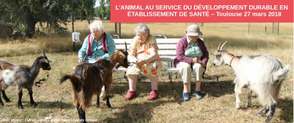 L'animal au service du développement durable en établissement de santé