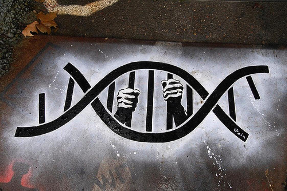 Troubles du comportement : gènes, environnement ou société ?