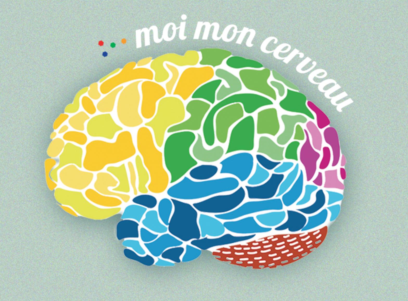Le cerveau sous toutes ses formes
