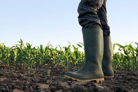 Suicides d'agriculteurs : sortir du réductionnisme économique