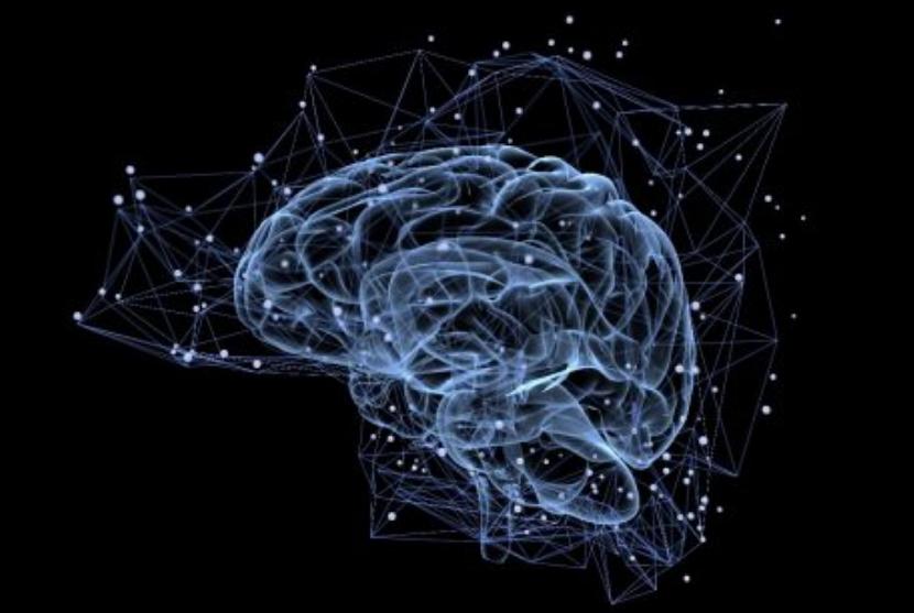 L'Inserm valide une « carte » du cerveau ouvrant la voie à une médecine prédictive