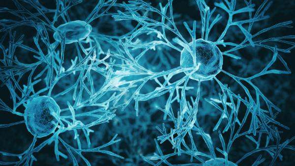 Troubles bipolaires : les effets du lithium sur le cerveau