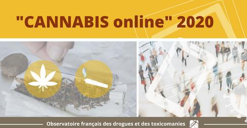 Confinement et pratiques addictives : l'enquête Cannabis online 2020