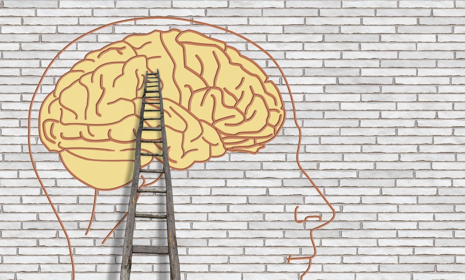 Isolement-contention en psychiatrie : comment réformer ?