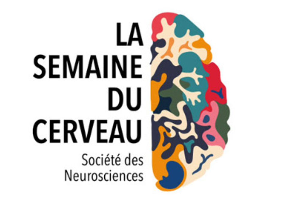 Semaine du cerveau 2021, save the date !