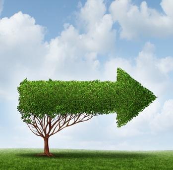 En psychiatrie, des innovations nées de la crise covid ouvrent des perspectives