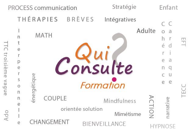 Quiconsulte FORMATION